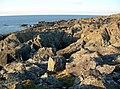 Bare Rocks - geograph.org.uk - 1709048.jpg