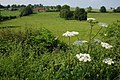 Barnsley near Cleobury Mortimer - geograph.org.uk - 466503.jpg