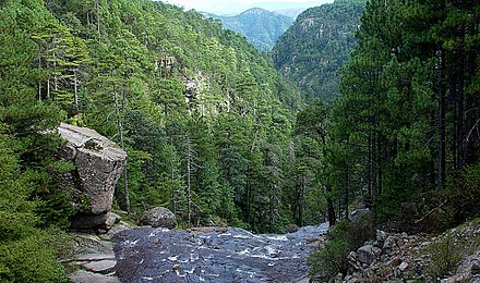 View toward the canyon at the Mexiquillo (es) nature reserve. Barrancas en parque natural mexiquillo.jpg
