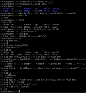 Shell (computing) - Bash, a widely adopted Unix shell