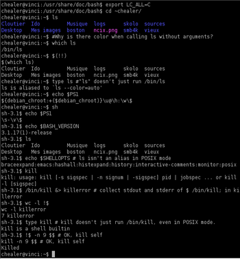 Screenshot of a Bash 3.1 session demonstrating...