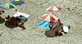 Beach (448873143).jpg