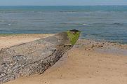 Beach Sainte-Marie-de-Ré Charente Maritime.jpg
