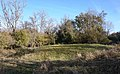 Bell Barrow Graffham Nature Reserve.jpg