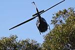 Bell Iroquios Huey UH1H (26591940045).jpg
