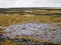 Bembridge Foreland - geograph.org.uk - 484645.jpg