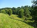 Bend in the Rudhall Brook - geograph.org.uk - 898381.jpg