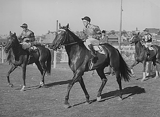 Bernborough - Image: Bernborough 1946 Tatts Chelmsford Stakes Randwick Racecourse Jockey Athol Mulley Trainer Harry Plant