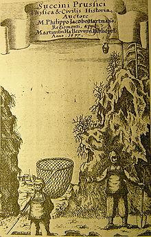 bernstein – wikipedia, Hause ideen