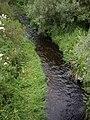 Bervie Water - geograph.org.uk - 1392041.jpg