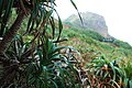 BiTou Cape (鼻頭角) - panoramio (4).jpg
