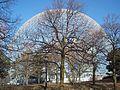 Biosphere 04.JPG