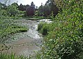 Birr Castle grounds - geograph.org.uk - 1364545.jpg