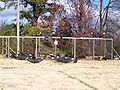 Black Vulture bait cage.jpg