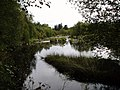Black Water of Dee south of Stroan Loch - geograph.org.uk - 550836.jpg