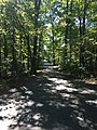 Blendon Woods Metro Park October 2018 9.jpg