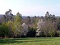 Blick von der Königlichen Jagdhütte - panoramio.jpg