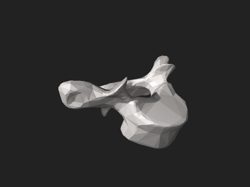File:BodyParts3D FJ3160 Second thoracic vertebra.stl
