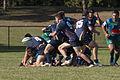 Bond Rugby (13373942124).jpg