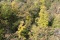 Bosck - panoramio (1).jpg