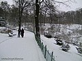 Botanic Garden in winter - panoramio - eugeneloza (1).jpg