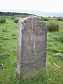Boundary stone on Deanhead Moor - geograph.org.uk - 450626.jpg