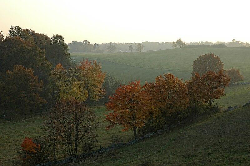 File:Brösarps backar okt 2005.jpg