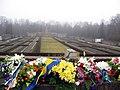 Brāļu kapi 2010 novembris - panoramio.jpg