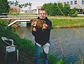 Bream caught in the Netherlands with a rod.jpg