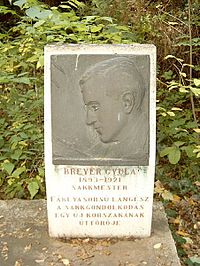 Breyer Gyula sírja.jpg