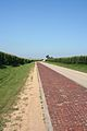 Brick Road near Oregon, IL 01.JPG