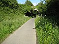 Bridge over the Tarka Trail, near Ashford - geograph.org.uk - 1360664.jpg