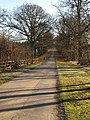 Bridleway - drive through Oakly Park - geograph.org.uk - 1122157.jpg