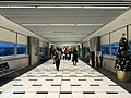 Brisbane Airport, Virgin Blue Domestic Terminal at Christmas 2016, 01.jpg