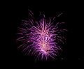 British Fireworks Championship 2009 15.jpg