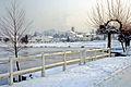 Brocas sous la neige 29.jpg