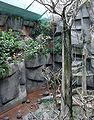 Brookfield zoo fg08.jpg