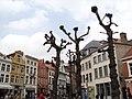 Brugge - panoramio (324).jpg