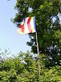 Buddhist flag in Khasgaon village in Jalna Dist, Maharashtra state, India.jpg