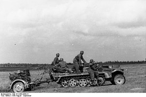 Battle of Smolensk (1943) - German troops near Smolensk, August 1943