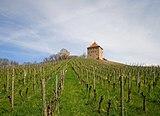 Burg Wildeck Abstatt April 2018.jpg