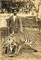 Butte Patil With Bengal Tiger trophy 2.jpg