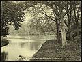 By the lake shore, Clandeboye (13309913465).jpg