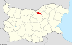 Byala Municipality within Bulgaria and Ruse Province.