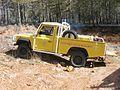C.C.F.l. 600 Land-Rover Patrouille Forestière de Protection Landrover D.D.A.F. 83 III-2006.jpg