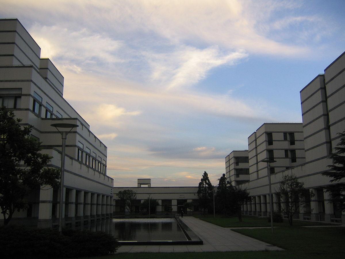 International Business school wikipedia english