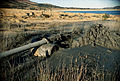 CSIRO ScienceImage 2644 Tailings From a Mine.jpg