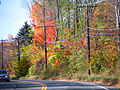 CT-190 Somers fall foliage.jpg