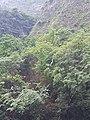 Cañón del Sumidero, Octubre 2020 -.jpg