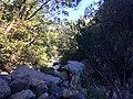 Cachoeira Véu da Noiva - Serra do Cipó - MG - panoramio (9).jpg
